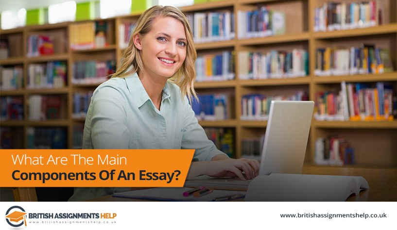 What Are The Main Components Of An Essay