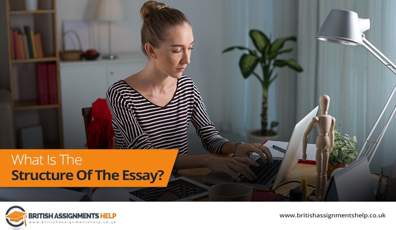 What Is The Structure Of The Essay